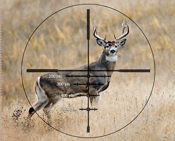 Best Scope For Deer Hunting