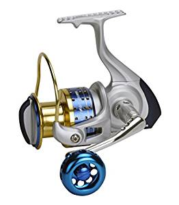 Cedros Spinning Reel Review