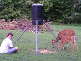Best Deer Feeder