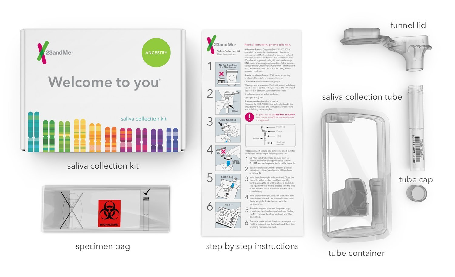 Top 4 Best DNA Ancestry Test Kit In 2019 - [Reviews & Infographic]
